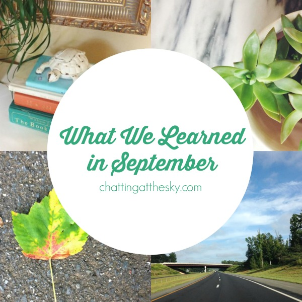 What-We-Learned-in-September
