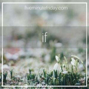 FF-Square-Images-Round-4-16